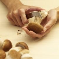 Bosch Haushaltsgeräte - Moods mit Pilz und Hand