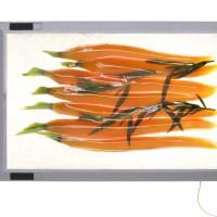 Sous-vide Vakuumkochen mit Karotten